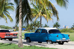 Cuba american Oldtimers parked under palms Stock Photo