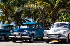 Cuba american Oldtimers under palms Stock Image