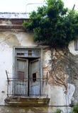 cuba balkonowy drzewo Havana Zdjęcia Stock