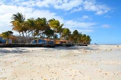 Cuba beach Royalty Free Stock Photos