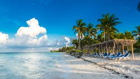 CUBA CAYO: Um assento na frente do mar das caraíbas Praia bonita Fotos de Stock Royalty Free