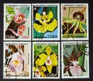 CUBA - CERCA DE 1980: uma série dos selos impressos em CUBA, orquídeas das mostras, CERCA de 1980 Imagens de Stock