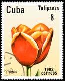 CUBA - CIRCA 1982: il francobollo stampato in Cuba mostra un ` di Ringo del ` del tulipano illustrazione vettoriale