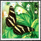 CUBA - CIRCA 1982: Postage stamp printed by Cuba shows butterfly Heliconius charithonius ramsdeni Royalty Free Stock Photography