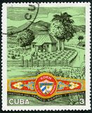 CUBA - 1970: shows Plantation, Eden cigar band, Cuban Cigar Industry Royalty Free Stock Photo