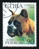 CUBA - CIRCA 2008: Un sello de los posts impreso en Cuba muestra imagen de un boxeador, circa 2008 foto de archivo