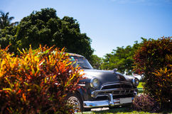 Cuba classic car in the front view Stock Images