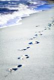 Cuba footprints in the Caribbean sand with waves Stock Images