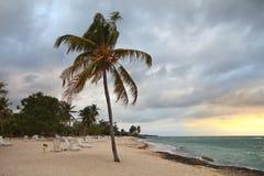 Cuba - Guardalavaca beach. Guardalavaca beach in Holguin Province, Cuba. Palm tree Royalty Free Stock Image