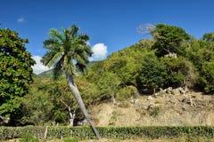 Cuba landscape Royalty Free Stock Photo