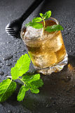 Cuba Libre Drink with mint and Cola Stock Image
