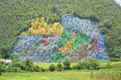 Cuba Mural of Prehistory Royalty Free Stock Image