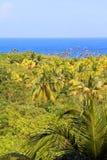 Cuba nature stock images