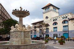 Cuba. Old Havana. Sierra Maestra Havana and fountain of lions on San Francisco Square Royalty Free Stock Image