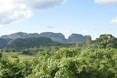CUBA Valle de Viñales em Piñar del Rio Imagens de Stock