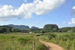 CUBA Valle de Viñales em Piñar del Rio foto de stock royalty free