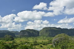 CUBA Valle de Viñales in Piñar del Rio Stock Photography