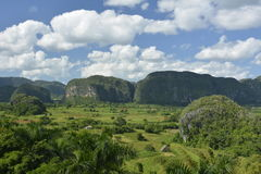 CUBA Valle de Viñales in Piñar del Rio. Views of the Mogotes limestone steep sided hills, valleys, tobacco fields and farmland, including dwelling and stock image