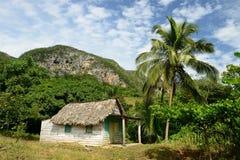 Cuba, Valle de Vinales Immagini Stock