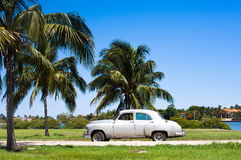 Cuba white classic cars under palms. Cuba a white classic cars on the road Royalty Free Stock Photo