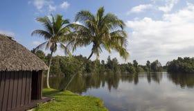 Cubaans landschap Stock Foto's