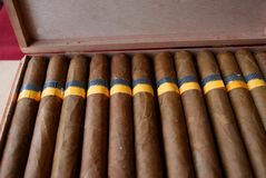Cubaanse sigaren Stock Foto