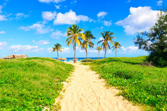 The cuban beach of Varadero Royalty Free Stock Photo