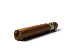 Cuban Cigar. On white background stock photography