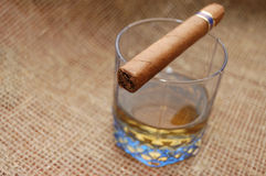 Cuban cigar on glass with whiskey Royalty Free Stock Photo