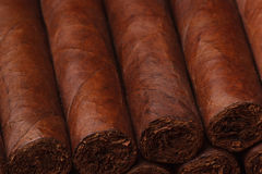 Cuban cigar Royalty Free Stock Photography