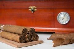 Cuban cigars and humidor. Cuban cigars, dried tobacco leaves and humidor stock photography