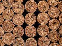 Cuban cigar rolling patterns Stock Image
