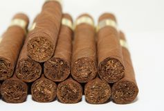 Cuban cigars. On a white background Royalty Free Stock Image