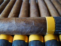 Cuban cigars. Paralell and one is on top of them Royalty Free Stock Photo