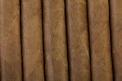 Cuban Cigars. Closeup of cuban cigars in a box Royalty Free Stock Photography