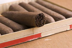 Cuban Cigars in box Royalty Free Stock Photo