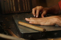 Cuban cigars crafter's hands rolling cigars Royalty Free Stock Photos
