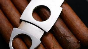 Cuban cigars and cutter stock footage