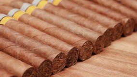 The Cuban cigars, hand made stock video