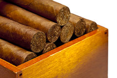 The Cuban cigars, hand made Royalty Free Stock Image