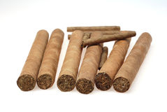 Cuban cigars in a humidor Stock Photography