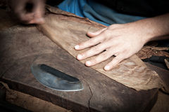 Cuban cigars in the making Royalty Free Stock Photos