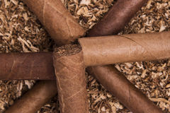 Cuban cigars on tobacco Royalty Free Stock Images
