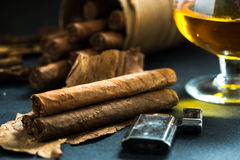 Cuban cigars on tobacco leafs Stock Photo