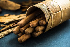Cuban cigars in traditional palm leafs box Stock Photography