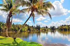 Cuban country landscape Royalty Free Stock Photography