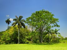 Cuban countryside landscape Royalty Free Stock Photography