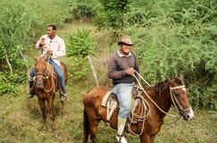 Cuban Cowboys, Gaucho and their Horses Stock Photos