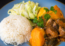 Cuban Cuisine: Lamb Stew Royalty Free Stock Photos