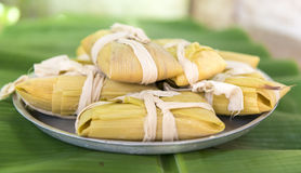 Cuban cuisine: traditional homemade tamales Royalty Free Stock Photography